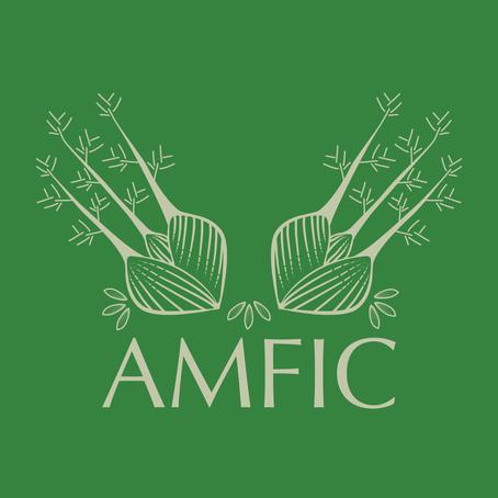 Design Play: AMFIC Branding