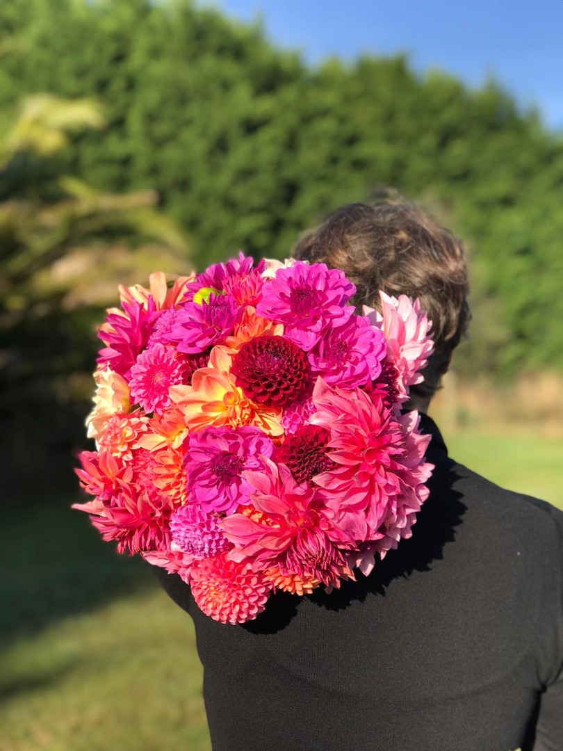 Récolte octobre