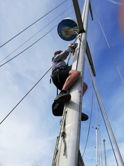 Up mast 2.jpg
