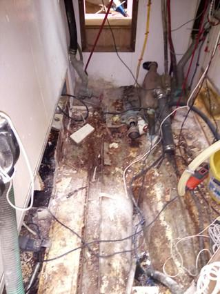 Rotten floor 2.JPG