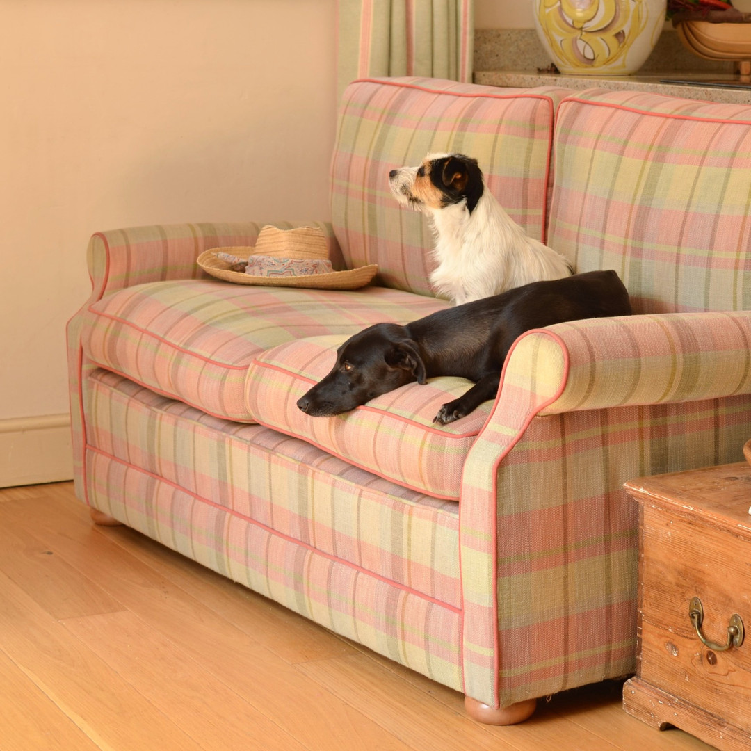 2-seater Dart sofa… Not a dog bed.