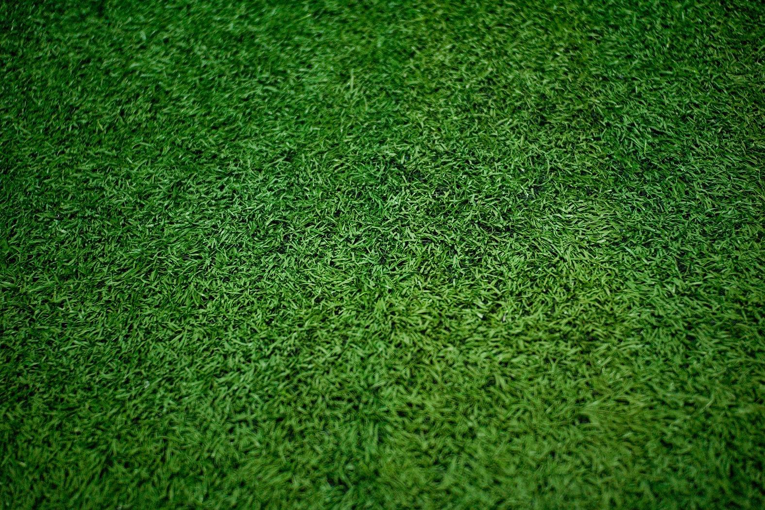 Green grass soccer field close-up backgr
