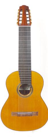 2009 10 String Tomas Delgado