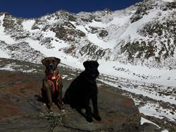 Alpenüberquerung mit Hund Windach