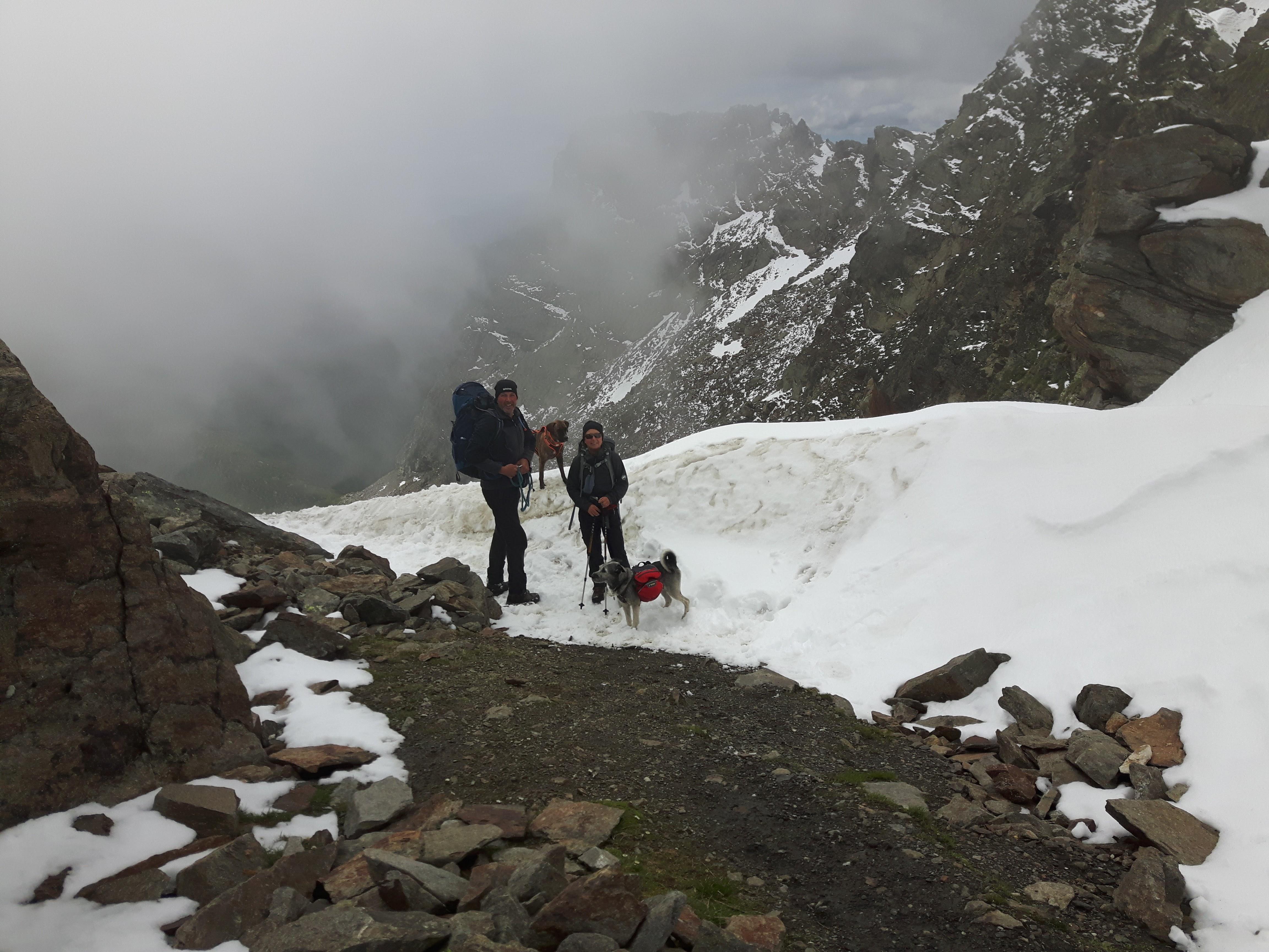 Alpenüberquerung mit Hund , Übergang