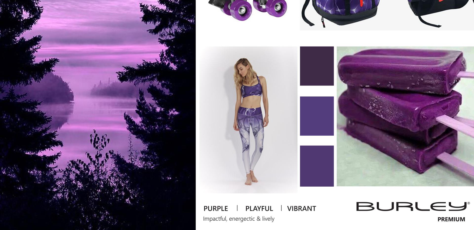 BurleCB purple.jpg