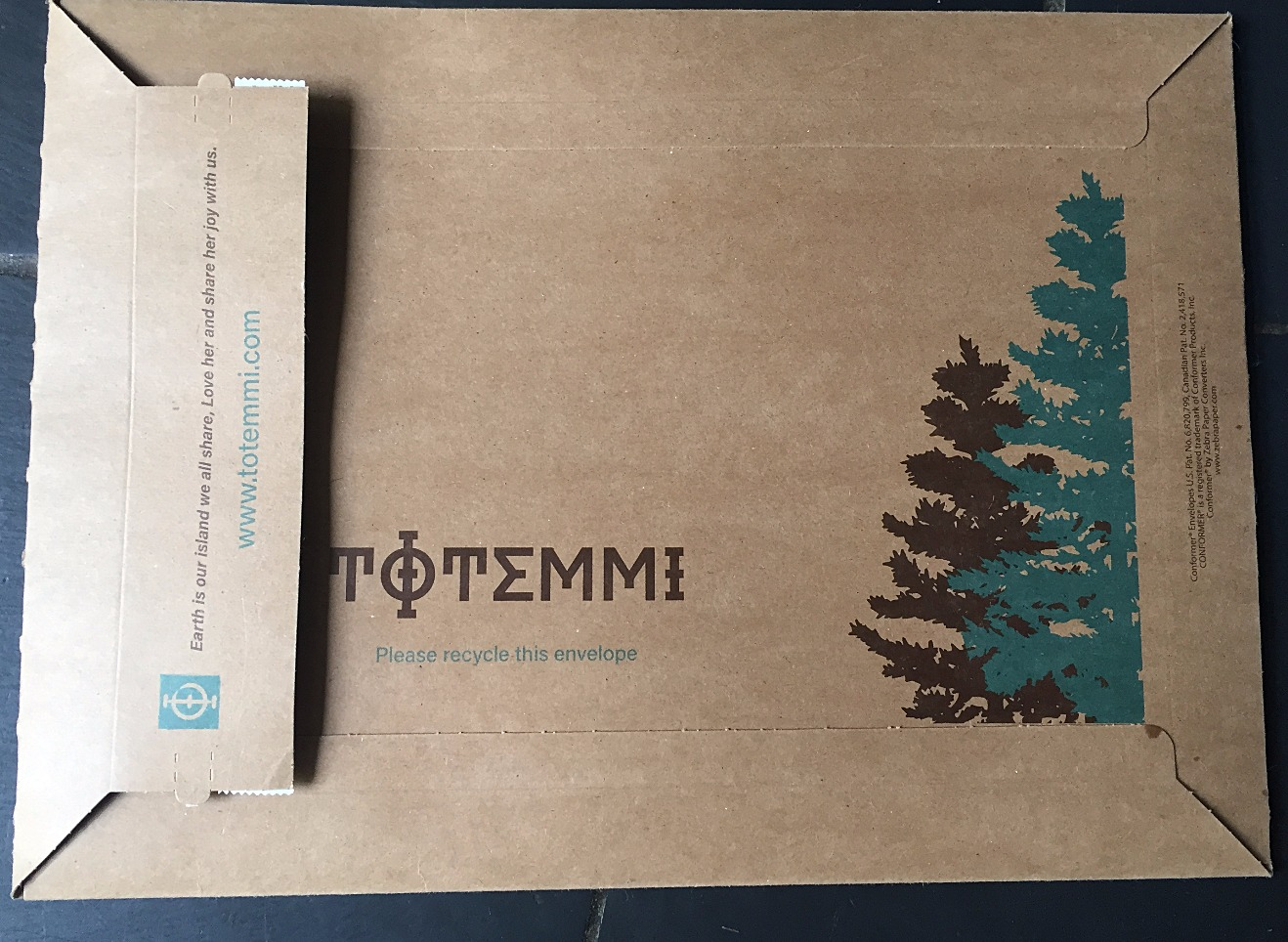 Totemmi Mailer Branding & Color
