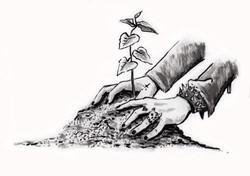Environmentalism