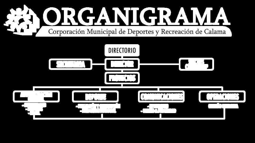 ORGANIGRAMA.png
