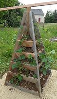 Meuble bois massif bio - Pyramide à fraises