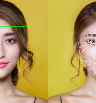 What's the Difference Between Facial Recognition and Facial Detection?