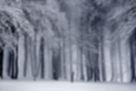 Coro Ricercare Winter Photo
