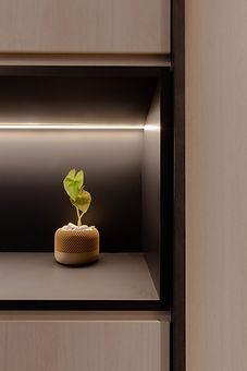 Hock Hoon, Ng Ci En, Soh Xin Hui, Interior Design Singapore, Chua Min Sheng, Sohen, Open Shelves, indoor plants, Parc Riviera, Ng Chin Hok