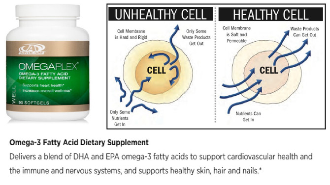 The Power of Omega-3s