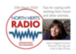 NH Radio image.JPG