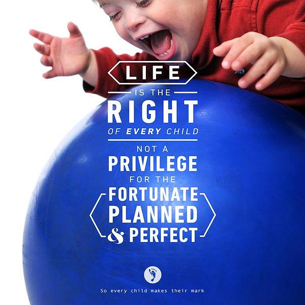 life-is-the-priilege.jpg