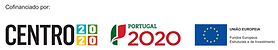CENTRO 2020 PNG.png