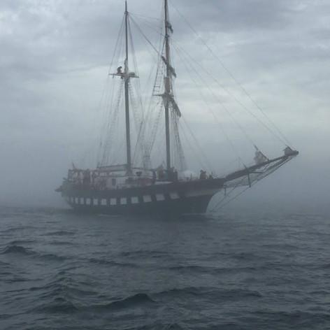 Fair Jeanne steaming through the fog.