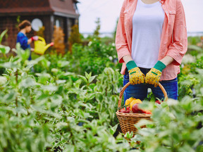 Do Organic Foods Help Relieve Food Sensitivities?