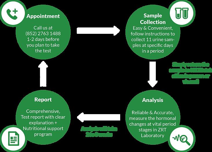 The Test Process(Irregular Cycles).png