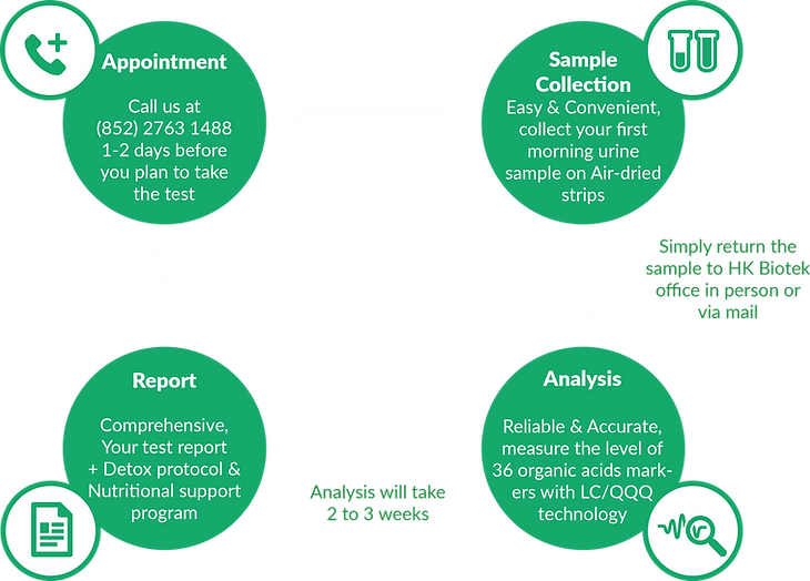 The Testing Process(Metabolic Profile).p