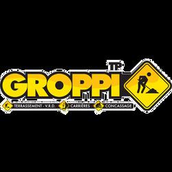 PULSE ACTIVITY - LOGO GROPPI