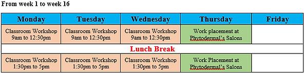 SHB30115 Class Schedule.png