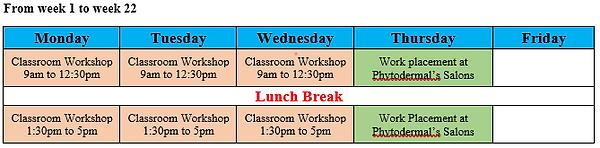 SHB40115 Class Schedule.png
