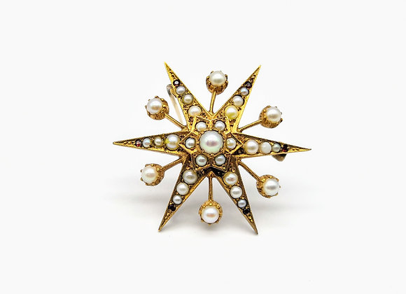 15ct Pearl & Ruby Large Star Brooch