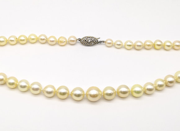 Graduated Cultured Pearl Diamond Clasp Necklace