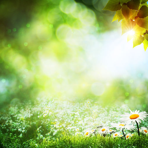 Art abstract natural backgrounds with be