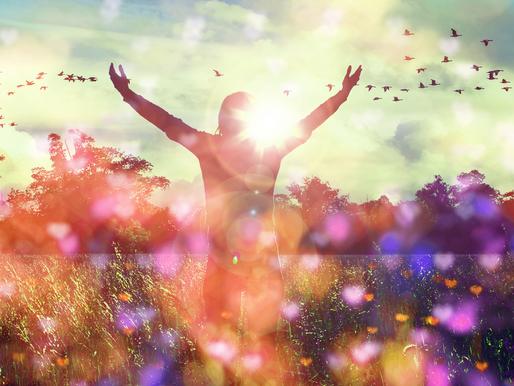 Bring Joy Forward