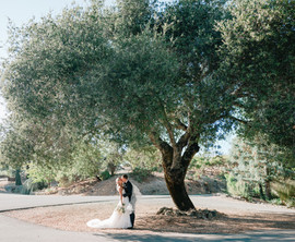 Wine Country Wedding Venue