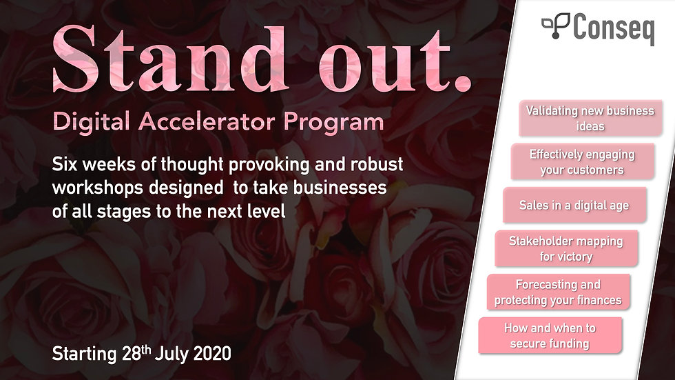 Stand Out Digital Accelerator Program