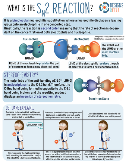 SN2 Reactions (2020)