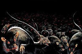 rats_promo.jpg