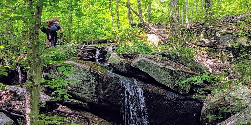 Blue Trail Hike 2