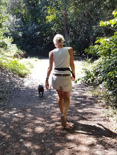 Walking Ralph a Senior Dog in Holly Hill with Holty Paws