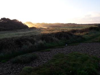 Morning Near Warsash Shore