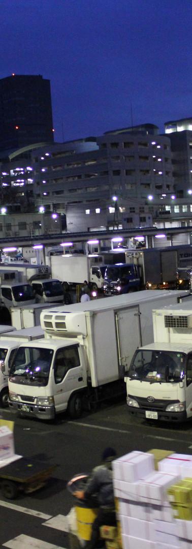 1・午前4時。広場はトラックで埋まり、ターレがびゅんびゅん。最も忙しい時間です