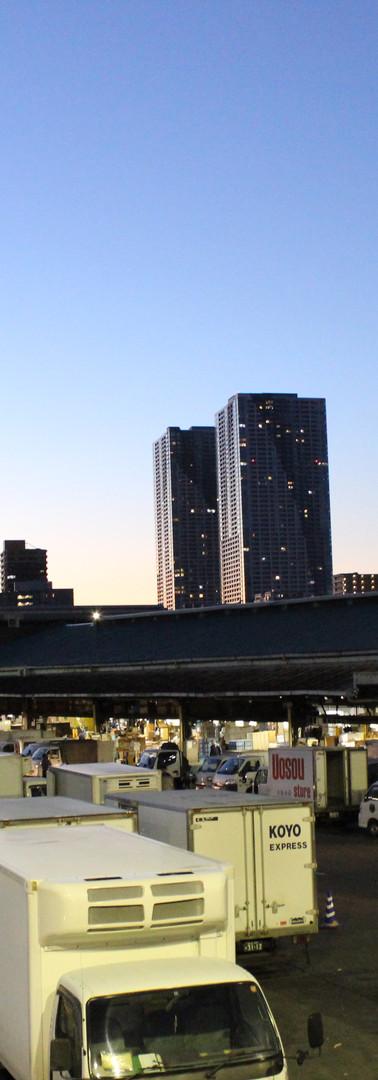 3・高層ビルに囲まれた市場だけど、市場自体、高い建物がないので、空は大きく感じます。