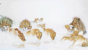 Lions in the Mist (prints only)