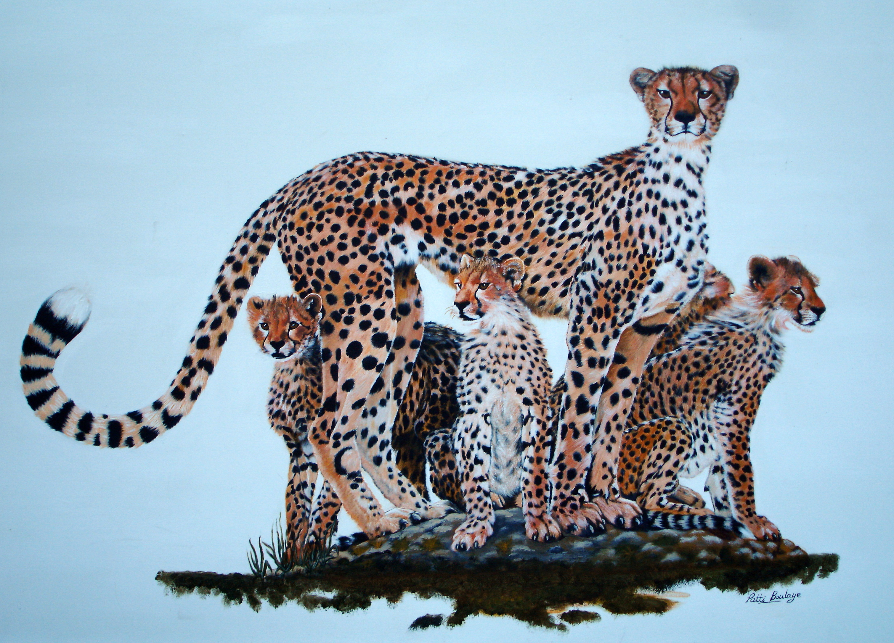 Family_of_Cheetahs_4ft_by_8ft