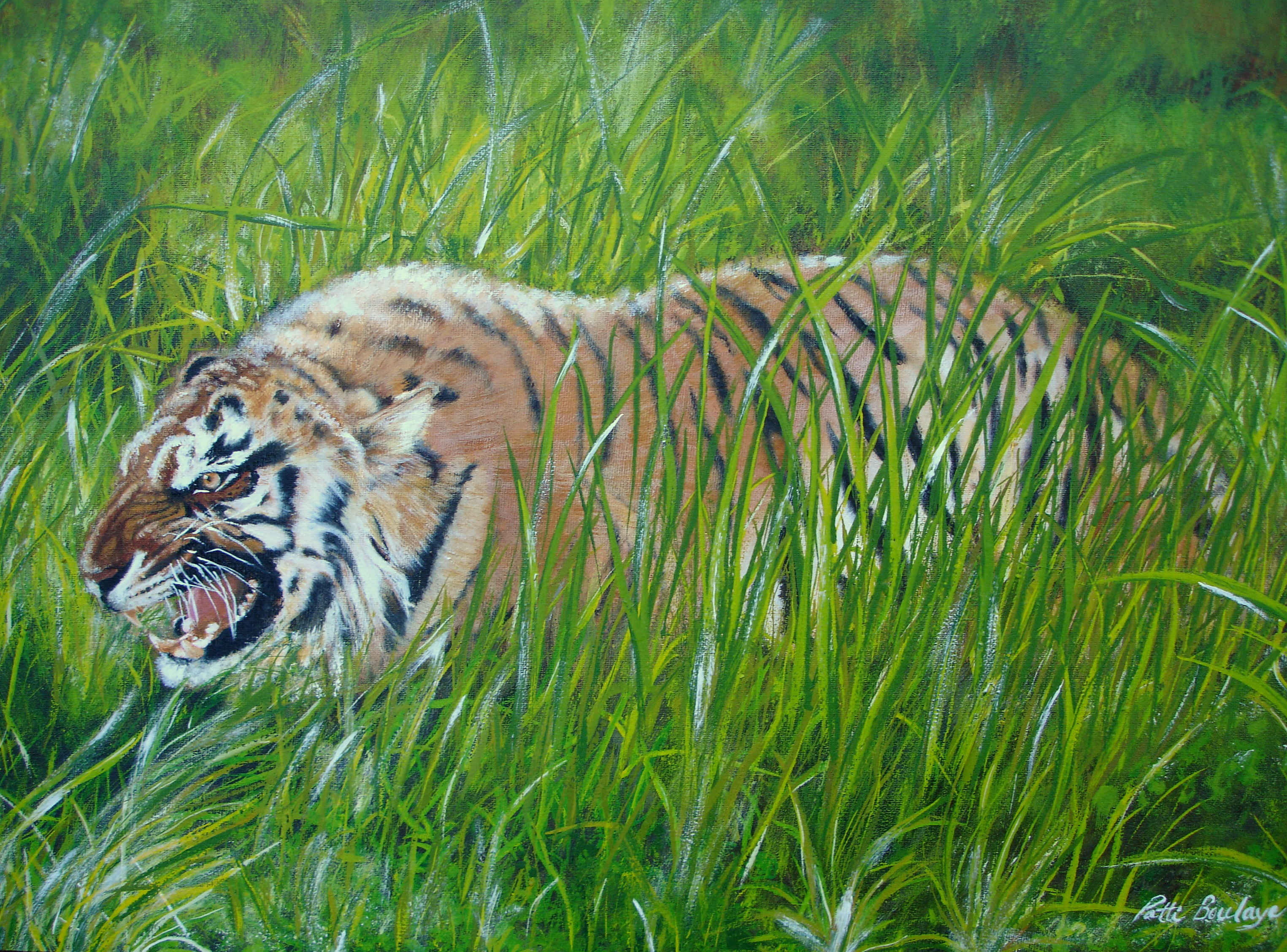 Angry_Tiger_(Prints only)