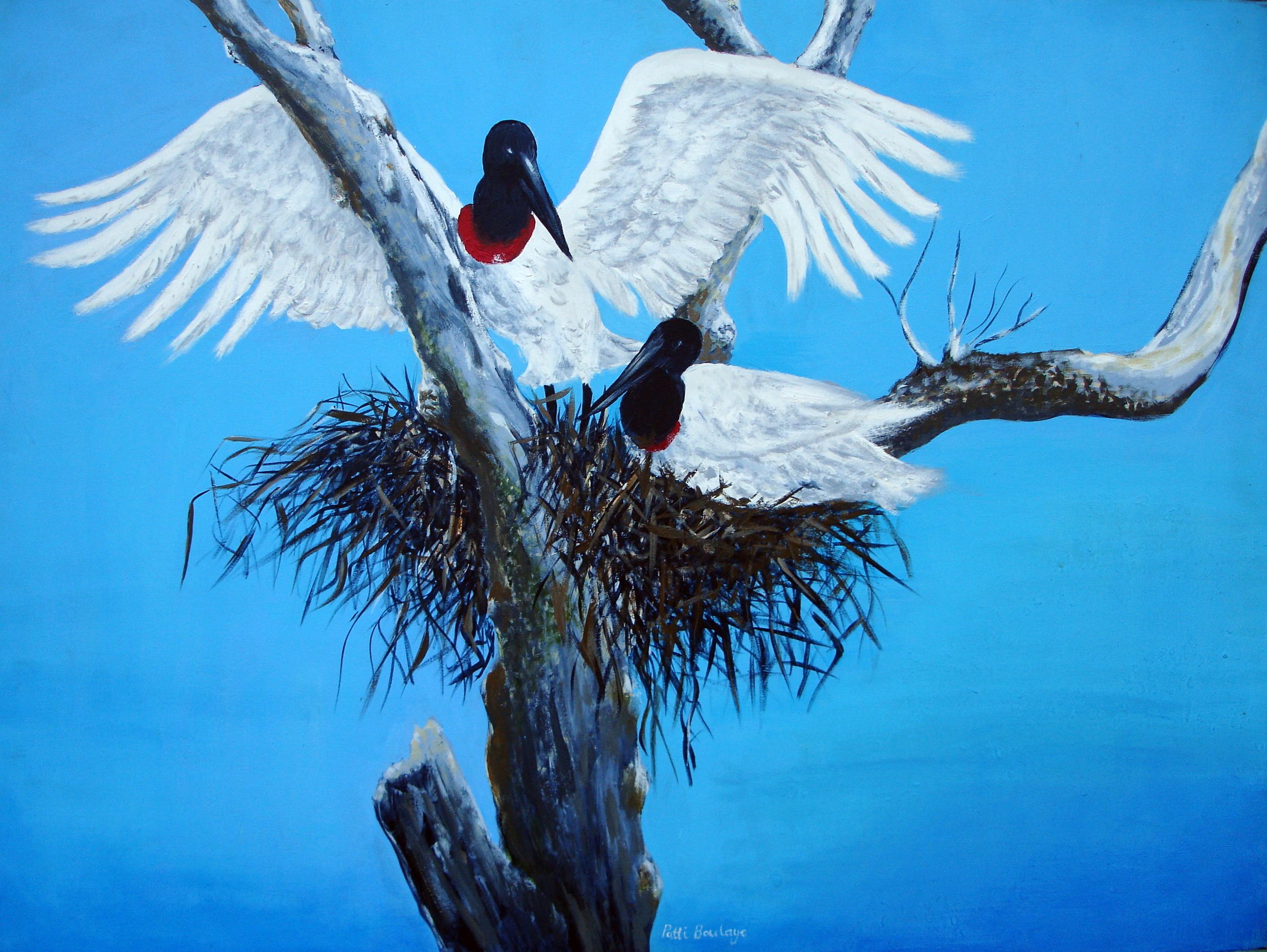 Nesting_Yuhu_Birds