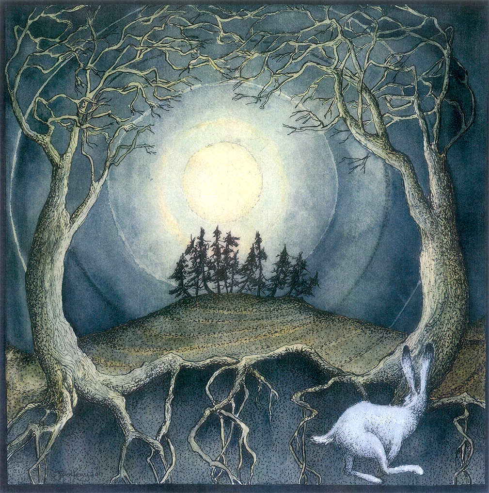 Full Moon White Hare