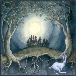 Full Moon White Hare