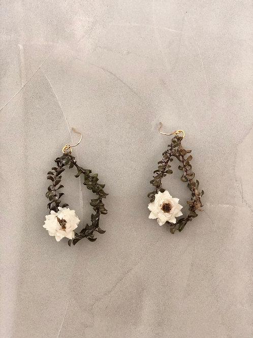 02 Eucalyptus earrings