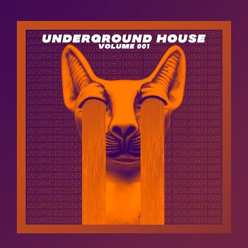 NASCHKATZE UNDERGROUND HOUSE VOLUME 001.