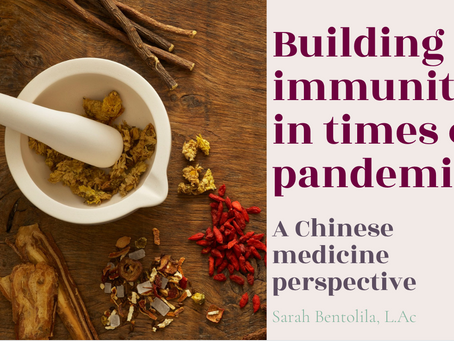 Free Online Conference: Building immunity in times of a pandemic.
